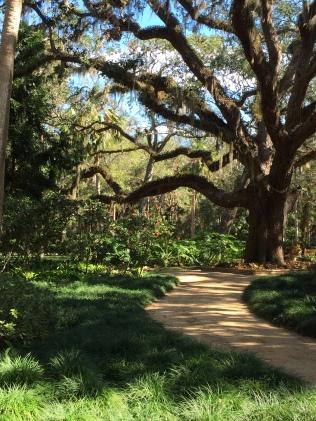 Washington Oaks walking path through gardens