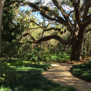 Washington Oaks walking path through gardens