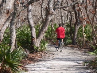 Washington Oaks bike path