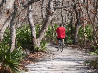 Washington Oaks bike path