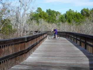 Lehigh Trail Boardwalk